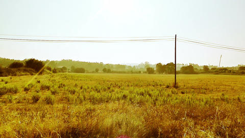 Mediterranean Field with Electric Pole 2 stylized Stock Video Footage