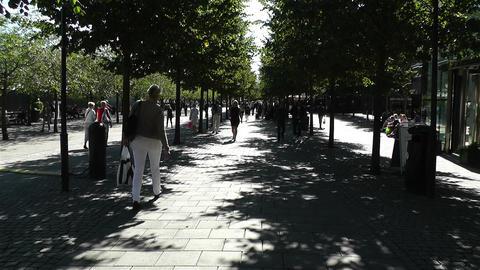 Stockholm Kungstradgarden 5 Footage