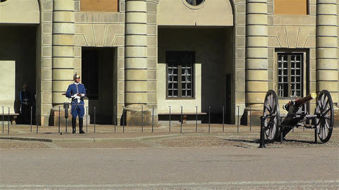 Swedish Royal Palace Stockholm 16 guard Stock Video Footage