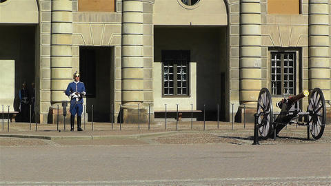 Swedish Royal Palace Stockholm 16 guard Footage