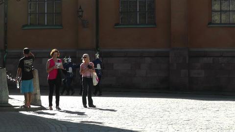 Swedish Royal Palace Stockholm 22 guards Footage
