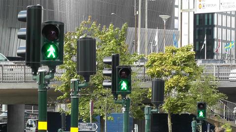 Traffic Lights Turn to Green 1 Footage