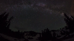 Fish eye view of milky way above with trees Footage