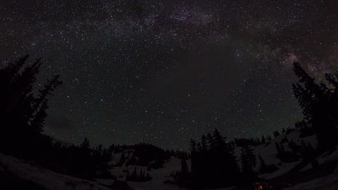 Fish eye view of milky way above with trees Stock Video Footage