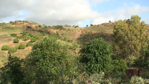 Hill In Africa Stock Video Footage