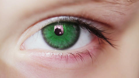 Green Eye Macro Shot Footage