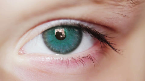 Eye Blue Amy 1 Macro Shot Stock Video Footage