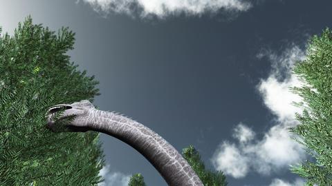 恐竜 stock footage