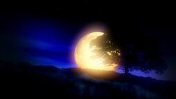 Spooky Moon Landscape Stock Video Footage
