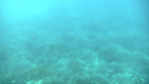 sea under Stock Video Footage