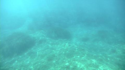 sea under Footage