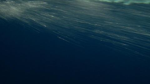 waterline slow motion 01 Stock Video Footage