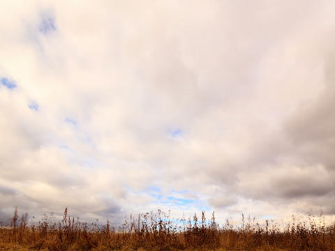 Clouds over dry grass. Time Lapse. 4x3 Footage