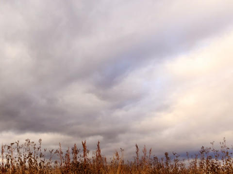 Clouds over dry grass. Panarama. Time Lapse Stock Video Footage