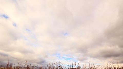 Clouds Over Dry Grass. From Top To Bottom. Time La stock footage