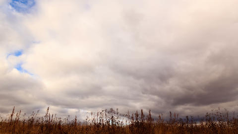 Clouds over dry grass. Time Lapse. 4K Footage