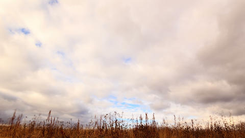Clouds over dry grass. Time Lapse. 4K Stock Video Footage