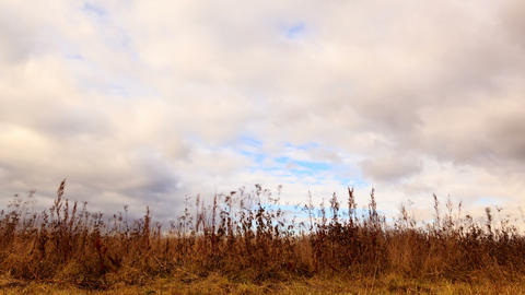 Clouds over dry grass. Time Lapse Stock Video Footage