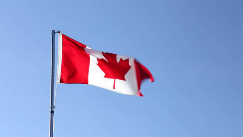 The National Flag of Canada Footage