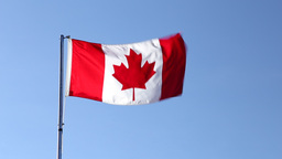 The National Flag of Canada Stock Video Footage