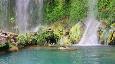 waterfall in forest close-up Stock Video Footage