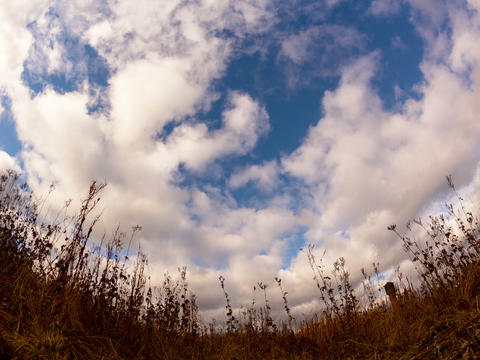 Clouds over dry grass. Fisheye lens Time Lapse. 4x Stock Video Footage
