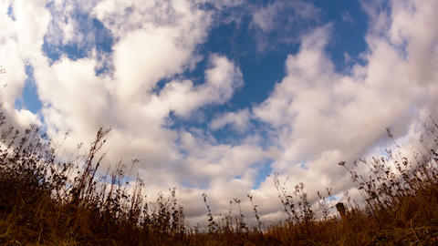 Clouds over dry grass. Fisheye lens Time Lapse. 4K Footage