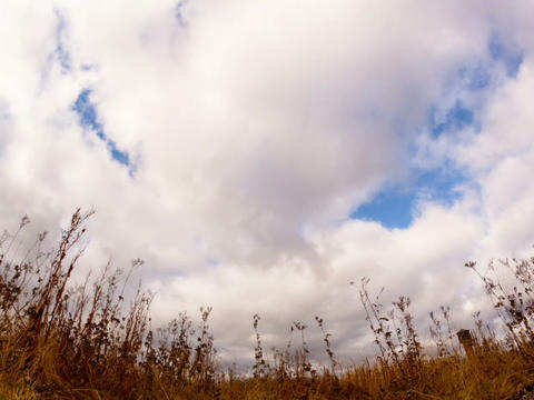 Clouds over dry grass. Fisheye lens Time Lapse Footage