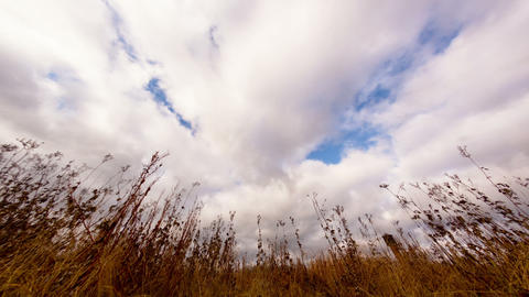 Clouds over dry grass. Fisheye lens Time Lapse Stock Video Footage