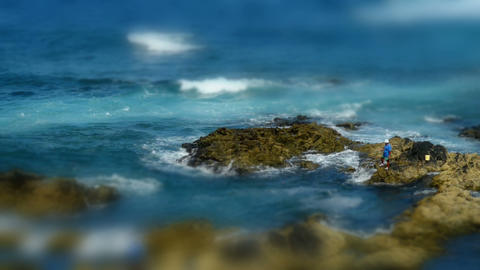 coast fishing tilt shift 11176 Stock Video Footage