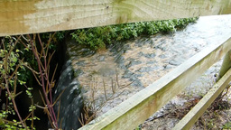 Spring water flows over road path Stock Video Footage