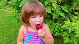 Little girl eating strawberry in green garden Footage