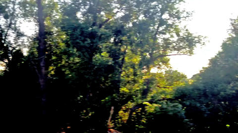 view from the train window Stock Video Footage
