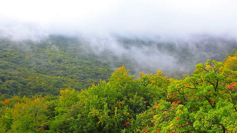 Autumn Landscape In Mountains stock footage