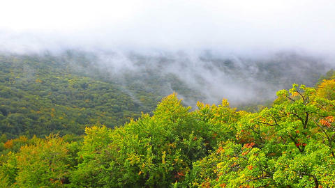 autumn landscape in mountains Stock Video Footage