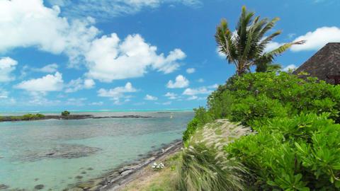 ocean landscape Stock Video Footage