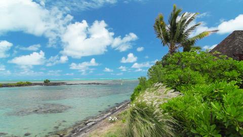 Ocean Landscape stock footage