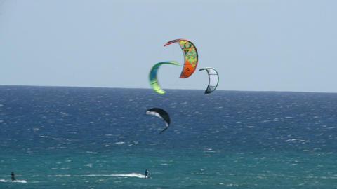 many kitesurfers fuerteventura beach 11195 Stock Video Footage