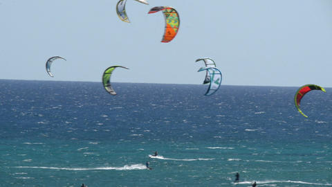 many kitesurfers fuerteventura beach 11195 Stock Video Footage