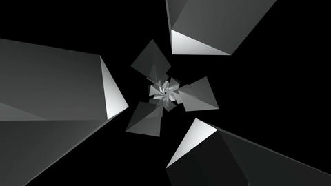 3D wide flying polygon Animation