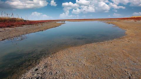 steppe landscape Stock Video Footage