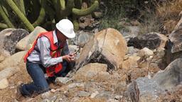 Geologist Man Rock Sample Stock Video Footage