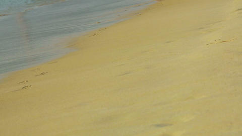 Sandy beach Stock Video Footage