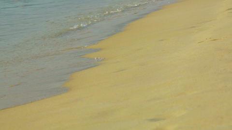 Sandy beach Stock Video Footage