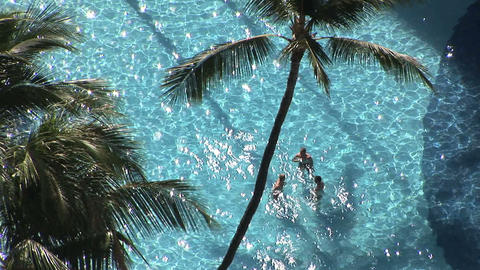 Tropical Pool Stock Video Footage