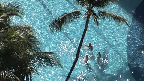 Tropical Pool stock footage