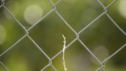 Wire fence close up Footage