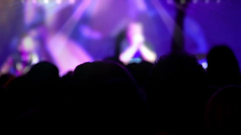 Crowd in front of the stage at a concert HD Stock Video Footage