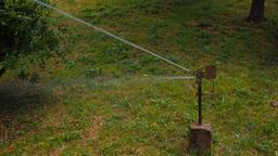 Garden Sprinkler Stock Video Footage