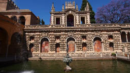 Gardens in Alcazar of Seville, Spain Stock Video Footage